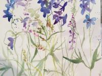 Delphiniums and Meadow Grasses
