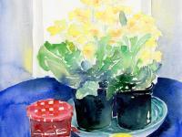 Primulas and Jam