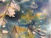 Reflections at Wicken Fen