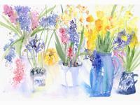 Summer House Flowers