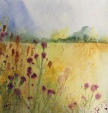 Yellow field with trees beyond and thistles and flowers in teh foreground
