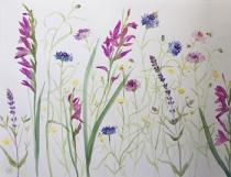 Gladioli, cornflowers, buttercups
