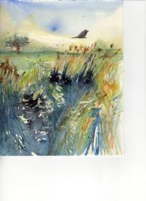 Bird flying across water and reeds