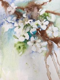 White May Blossom with sepia ink and watercolour