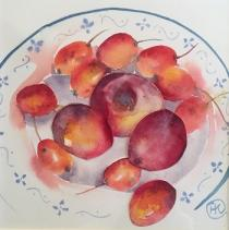 Glowing colours of plums and nectarines on a blue patterned plate