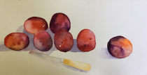 Plums with a silver paring knife on the table