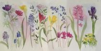 Spring in Flower