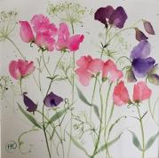 Pink and purple sweetpeas with ammi twisting through them