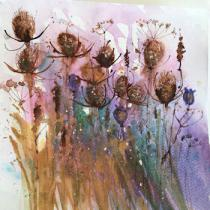 Teasels and seed heads