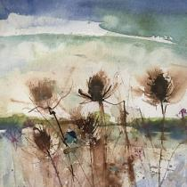 Ink teasels overlooking water and distant hills